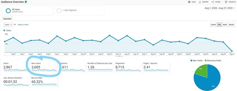 Screenshot of new users in Google Analytics