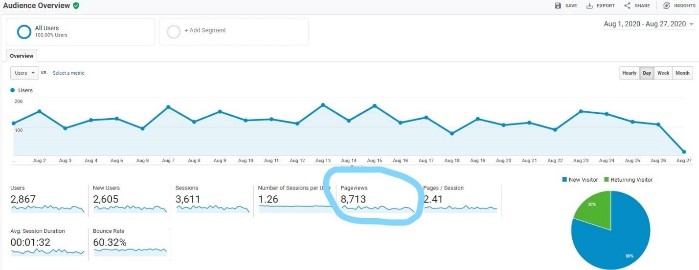Screenshot of pageviews in Google Analytics