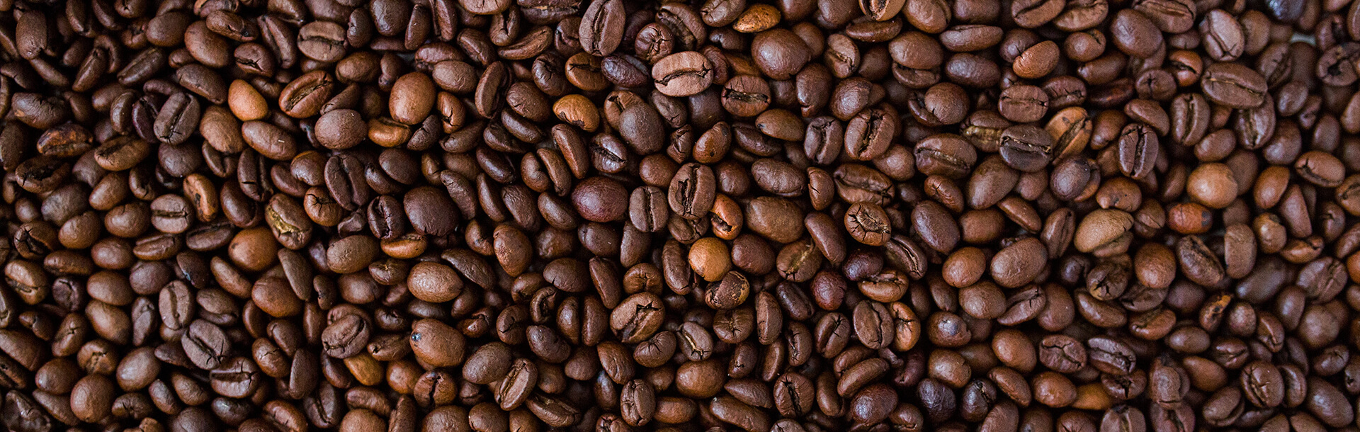 Professional photography of coffee beans